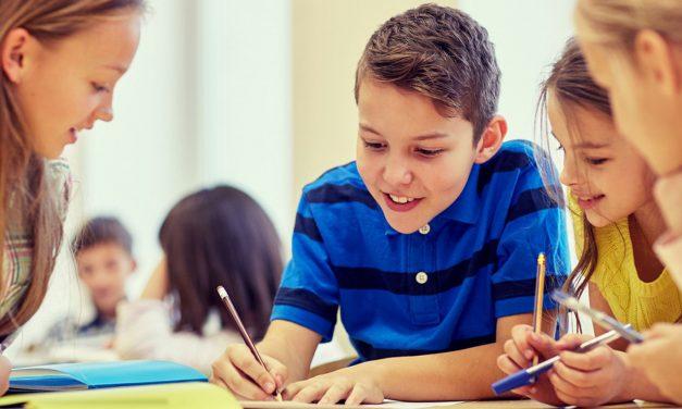 Webinar zur Ergebnispräsentation der Online-SchülerInnenumfrage